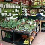 Estantería para comercio de jardinería :: MARSANZ