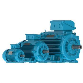 Motor eléctrico WEG W22 - Cast Iron Frame - High Efficiency - IE2